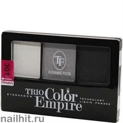 05621 Триумф TF Тени для век тройные Trio Color Empire 301 серый жемчуг
