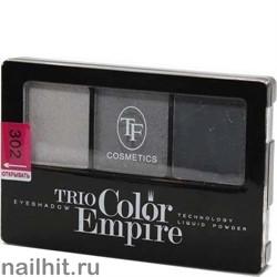 05638 Триумф TF Тени для век тройные Trio Color Empire 302 графит
