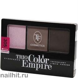 05669 Триумф TF Тени для век тройные Trio Color Empire 305 розовая дымка