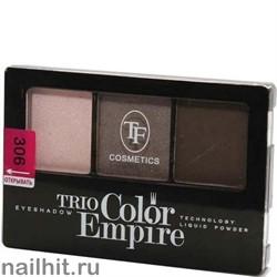 05676 Триумф TF Тени для век тройные Trio Color Empire 306 лесной орех