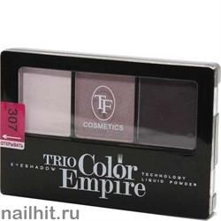 05683 Триумф TF Тени для век тройные Trio Color Empire 307 аметистовый