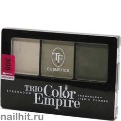 05690 Триумф TF Тени для век тройные Trio Color Empire 308 оливковое золото